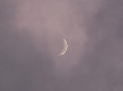 お月さま84