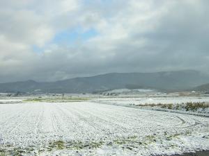 工房前初雪