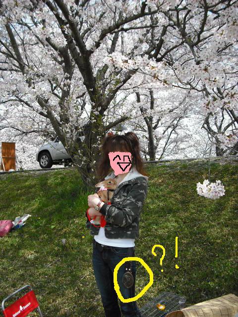 013_20110412073247.jpg