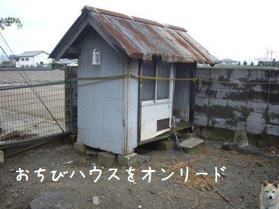 台風一過1
