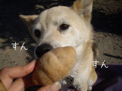 ゆるさくパン2