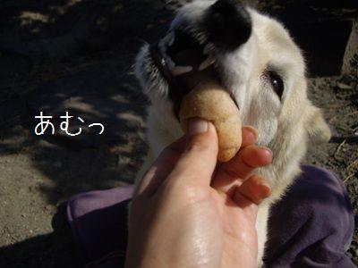 ゆるさくパン4