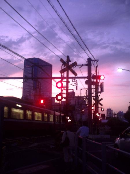 20110901.jpg