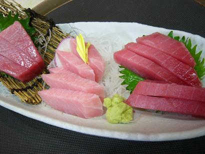 本マ・鉢赤・中とろ2 (2)小