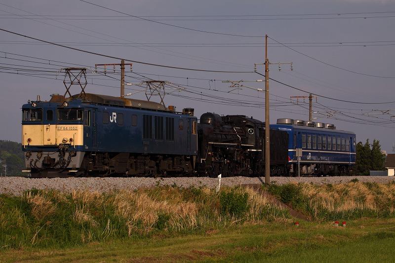 s-IMG_6618.jpg
