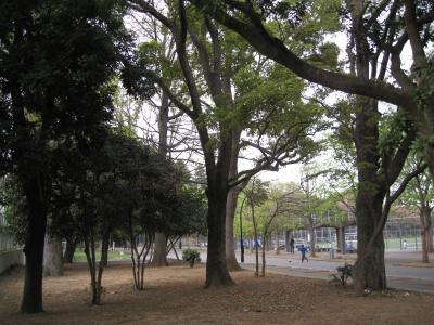 komazawa-1.jpg
