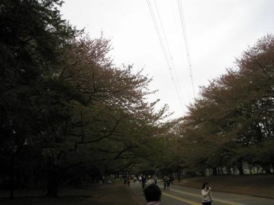 komazawa-9.jpg