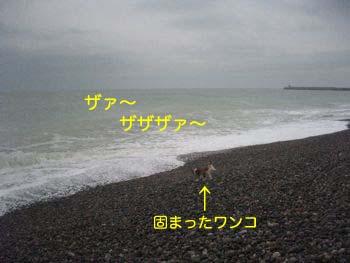 2007122705.jpg
