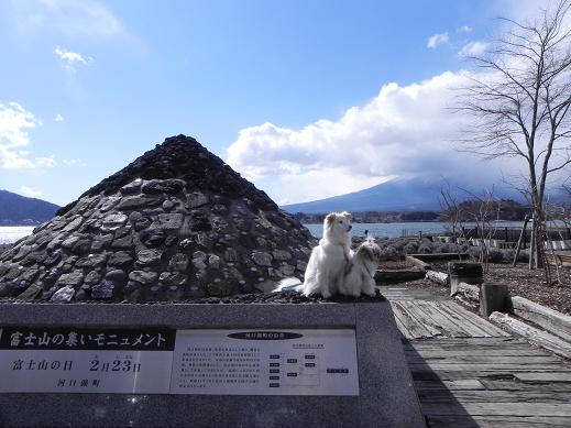 富士山が見えない(-_-)  3/26