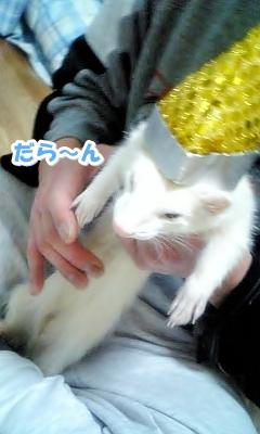 帽子をかぶったゆうちゃん☆