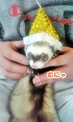 帽子をかぶったあゆむさん☆
