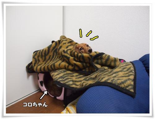 002_20111026194849.jpg