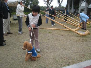 縺カ繧阪$+107_convert_20091023072809