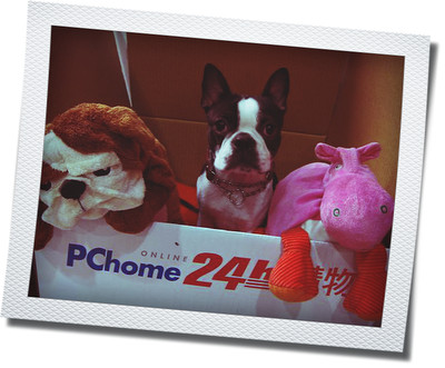 PChome2.jpg