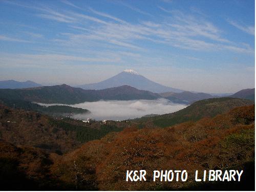 富士山と白い芦ノ湖