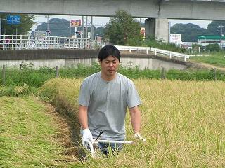 s-09.09.13おやじの会稲刈 007