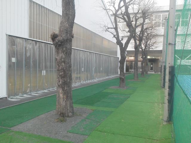 BSテニス 006