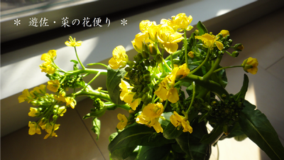 2012031401.png