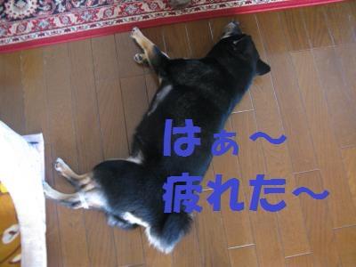 027_convert_20110425150332.jpg