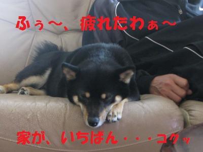 076_convert_20110504162937.jpg