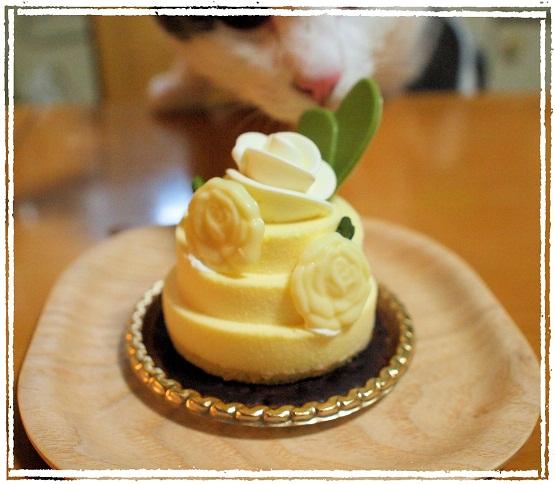 お祝いケーキ with プラム