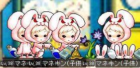 Maple110814_203109.jpg