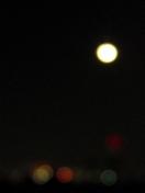 2011_11_16moonlight02.jpeg