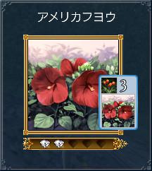 03_アメリカフヨウ
