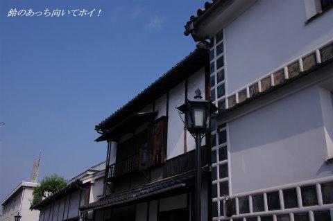 IMGP4687.jpg