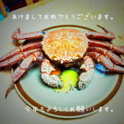 2012_01_01_kani400.jpg