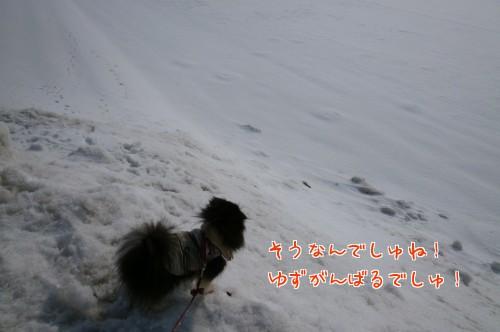 0308b_20120307120126.jpg