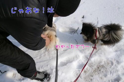 0309a_20120307120213.jpg