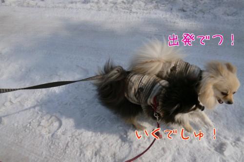 0309b_20120307120213.jpg