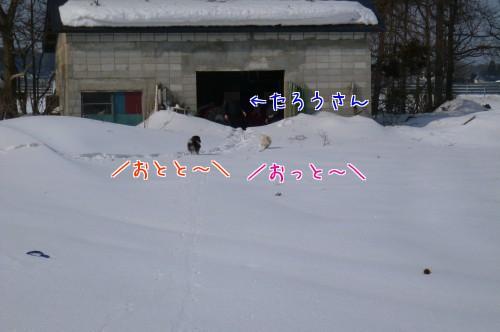 0309f_20120307120212.jpg