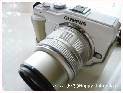 2011_0605_171232-P1040182.jpg