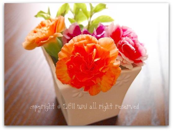 2011_0714_133720-P7140186.jpg