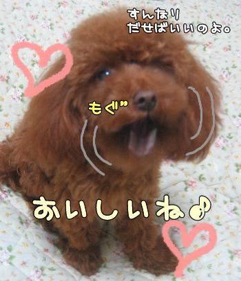 umi_tona 05124