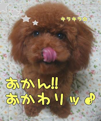 umi_tona 0224