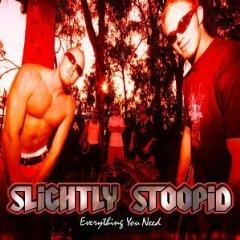 SLIGHTLY STOOPID「EVERYTHING YOU NEED」