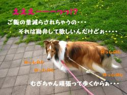IMG_0060-1.jpg