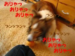 IMG_0074-1.jpg