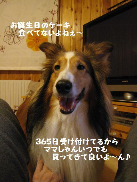 IMG_0325-1.jpg