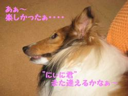 IMG_0426-1.jpg