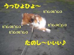 IMG_0570-1.jpg