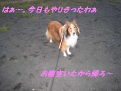 IMG_0574-1.jpg