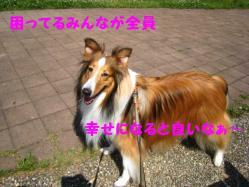 IMG_0841-1.jpg