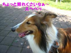 IMG_0847-1.jpg