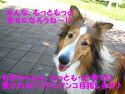 IMG_0848-2.jpg