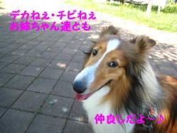 IMG_0849-1.jpg