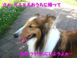 IMG_0855-1.jpg